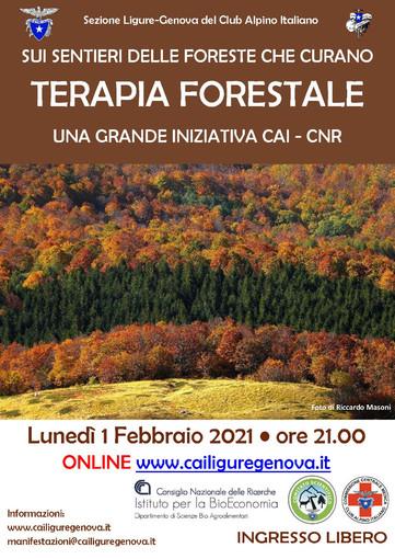 Terapia Forestale: una grande iniziativa CAI-CNR